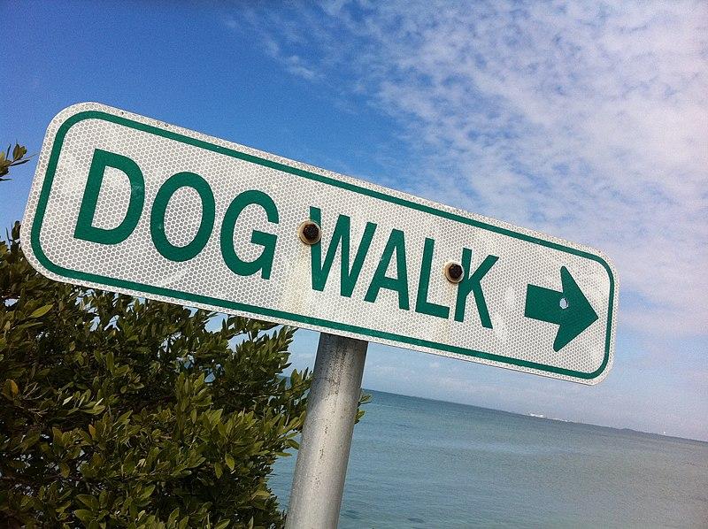 File:2011-365-53 Walk This Way (5469998240).jpg