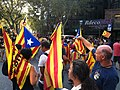 2012 Catalan independence protest (30).JPG