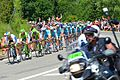 2014-07-16 Etape 11 du Tour de France. Peloton 4. Free image Spielvogel. No copyright.jpg