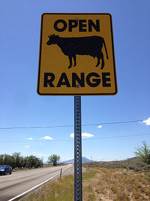 Open range - Open Range sign along southbound U.S. Route 93 in Lincoln County, Nevada.