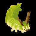 201412 charonda larva.png