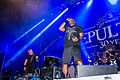 20150821 Essen Turock Open Air Sepultura 0071.jpg
