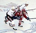 2015 Winter Classic (16170007042) (cropped).jpg