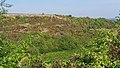 2016.09.24.-08-Leistadt--Naturschutzgebiet Felsenberg-Berntal.jpg