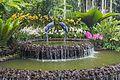 2016 Singapur, Ogrody botaniczne (261).jpg