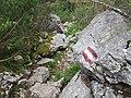 2017-07-22 (13) Lechnergraben at Dürrenstein (Ybbstaler Alpen).jpg