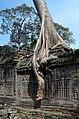 20171127 Preah Khan Angkor Cambodia 5016 DxO.jpg