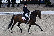 2018FEI-WORLD-CUP-DRESSAGE-Ludovic-Henry2.jpg