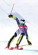 2020-01-15 Big Final Alpine skiing Parallel Mixed Team Event (2020 Winter Youth Olympics) by Sandro Halank–019.jpg