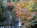 2 Minookōen, Minoo-shi, Ōsaka-fu 562-0002, Japan - panoramio (15).jpg