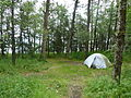 2 Tent in campground (11426205503).jpg