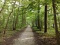 3981 Bunnik, Netherlands - panoramio - Alexandros Georgiou (24).jpg