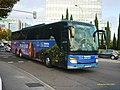6555 ALSA - Flickr - antoniovera1.jpg