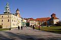 7419vik Wawel. Foto Barbara Maliszewska.jpg