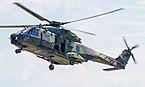 78+29 German Army NHIndustries NH90 TTH ILA Berlin 2016 19.jpg