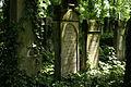 9810viki Cmentarz żydowski na Ślężnej. Foto Barbara Maliszewska.jpg