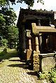 9853viki Cmentarz żydowski na Ślężnej. Foto Barbara Maliszewska.jpg