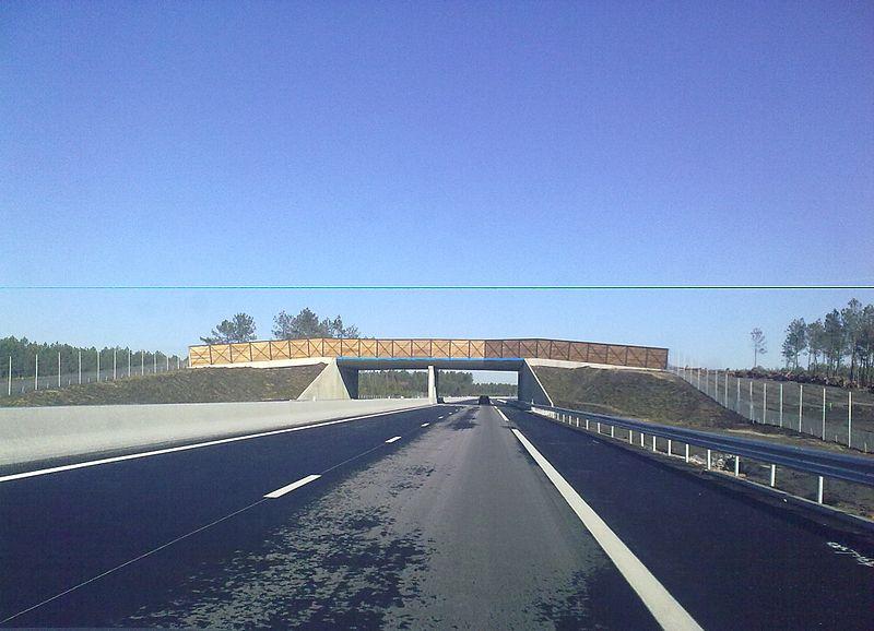 bordeaux arcachon autoroute