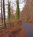 A827, Loch Tay - geograph.org.uk - 2179651.jpg