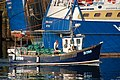 A blue moon at Bangor harbour - geograph.org.uk - 392572.jpg