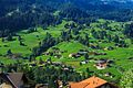 A day in the Grindelwald area - (10955383346).jpg