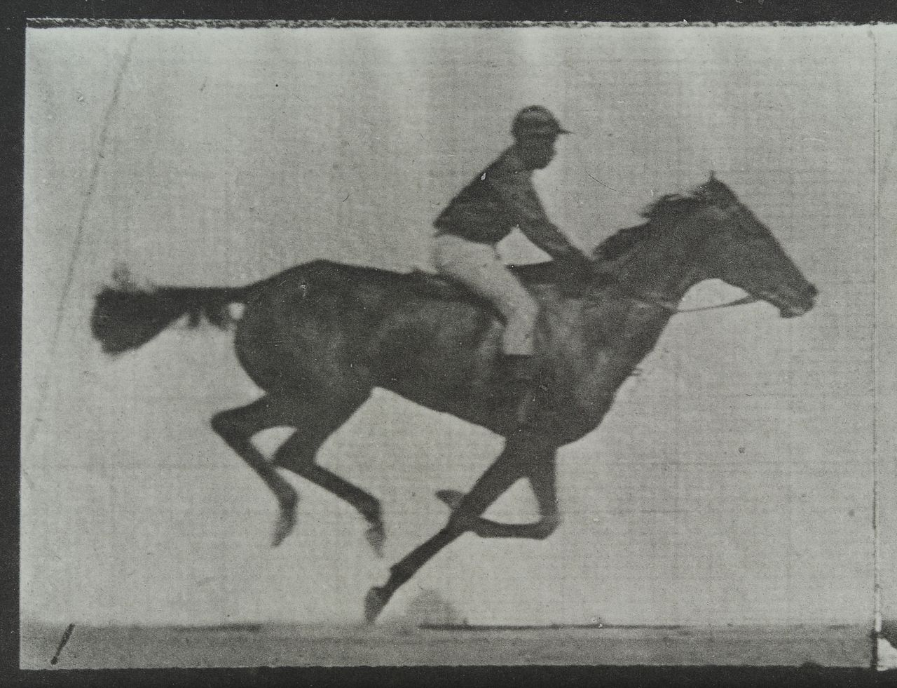 FileA Galloping Horse And Rider Plate 1 Wellcome L0038057