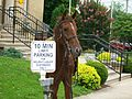 A horse tied to a 10 minute parking sign at the battle of Corydon reenactment.JPG