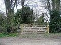 A new gate - geograph.org.uk - 751795.jpg