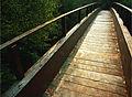 A ponte do muiño (Aranga) - panoramio (cropped).jpg