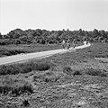 Aanleg en verbeteren van wegen, dijken en spaarbekken, rijwielpaden, fietsers, Bestanddeelnr 161-1396.jpg