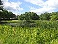 Aarslev Møllepark (søen).jpg