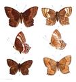 Abisara angulata 401.png