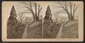 Academy Gound, Mt. St. Vincent, N.Y, by Weller, F. G. (Franklin G.),, 1833-1877.png