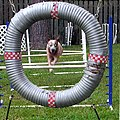 Acd jump chute.jpg