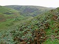 Across Cwm Culant to Nant-y-Ddwfn, Powys - geograph.org.uk - 1568585.jpg