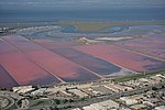 Aerial view of San Francisco Bay Area salt ponds dllu.jpg