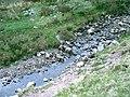 Afon Sawdde Fechan - geograph.org.uk - 800568.jpg