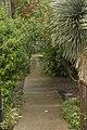 Alamo Walkway - panoramio.jpg