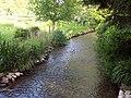 Allen River at Damerham - geograph.org.uk - 448174.jpg