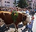 Alpabfahrt Mels. 2007-09-08 13-56-17.jpg