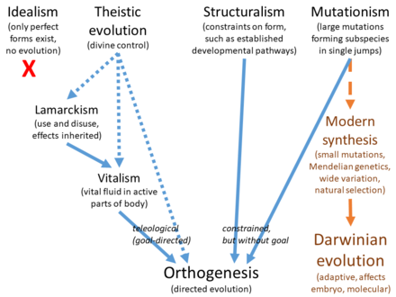 an analysis of the term socaial darwinism and the theories of evolution Richard dawkins coined the term universal darwinism (1983) it suggests that   these questions point to matters of social theory that are relatively neglected  even in  the then prominent analyses of otto ammon (1895), georges vacher  de.