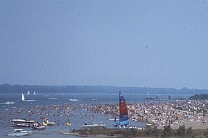 Alum Creek State Park - A busy day at the beach