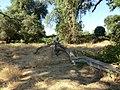 Am. River Fair Oaks 580 - panoramio.jpg