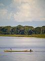 Amazonas, Brasilien (11672021103).jpg