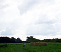 Angel Mounds HRoe 2009 05.jpg
