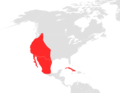 Antrozous pallidus map.png