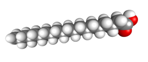 Arachidic acid - Image: Arachidic Acid