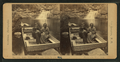 Arctic Philosopher and Wife in the Pool, Franconia Mts., N.H, by H. S. Fifield 2.png