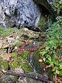 Arilje-bjelusa-7365.jpg