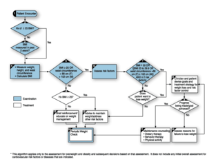 Medical diagnosis - An example of a medical algorithm for assessment and treatment of overweight and obesity.